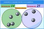 Proyecto PI: divisores comunes